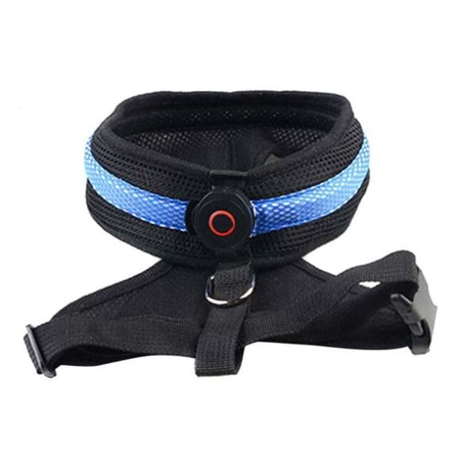 Led Dog Safety Collar Harness - Blue / S