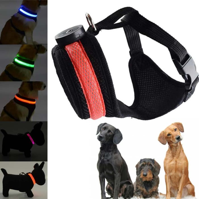 Led Dog Safety Collar Harness