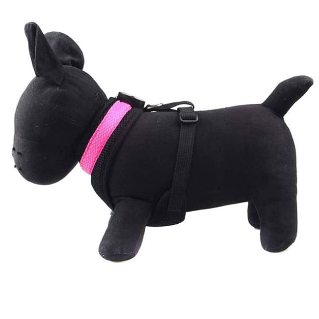 Led Dog Safety Collar Harness - Pink / S