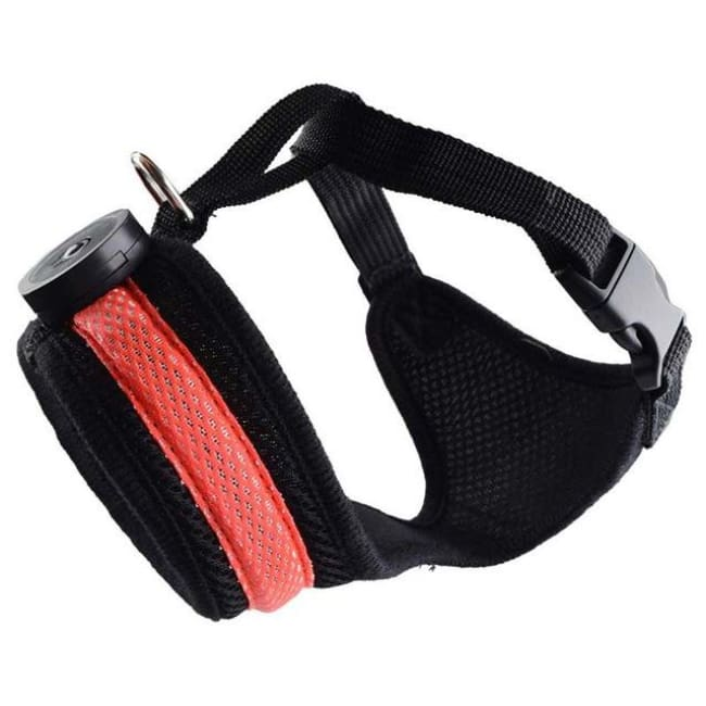 Led Dog Safety Collar Harness - Red / S