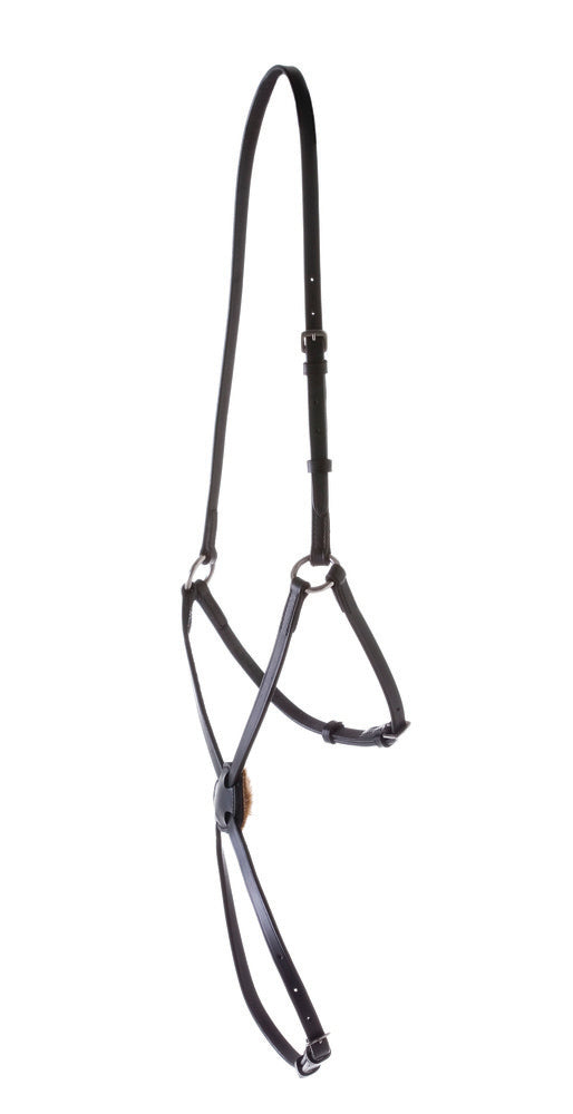 Kincade Grackle Noseband