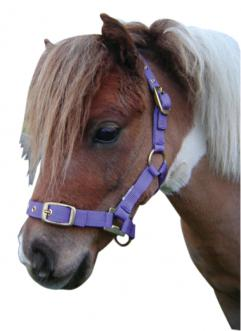 Miniature Nylon Headstall