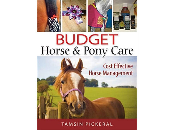 Budget Horse Pony Care: Cost Effective Horse Management