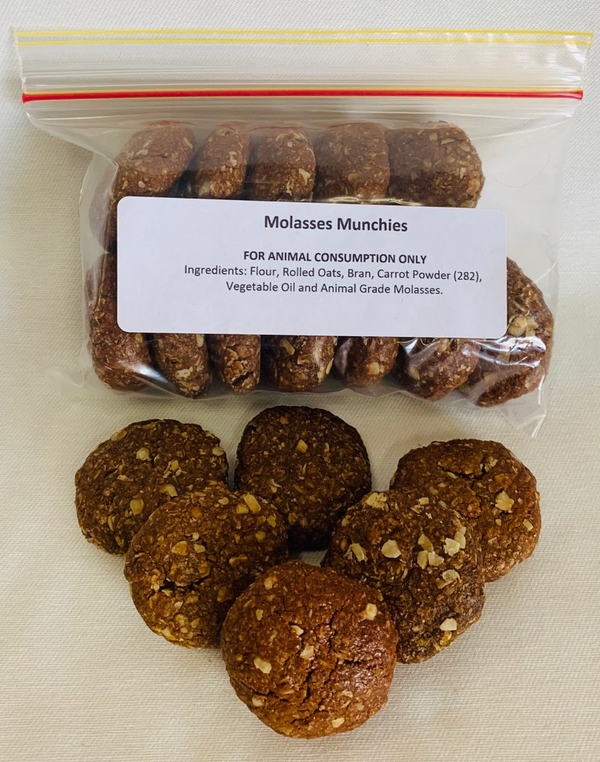 Molasses Munchies (Large)