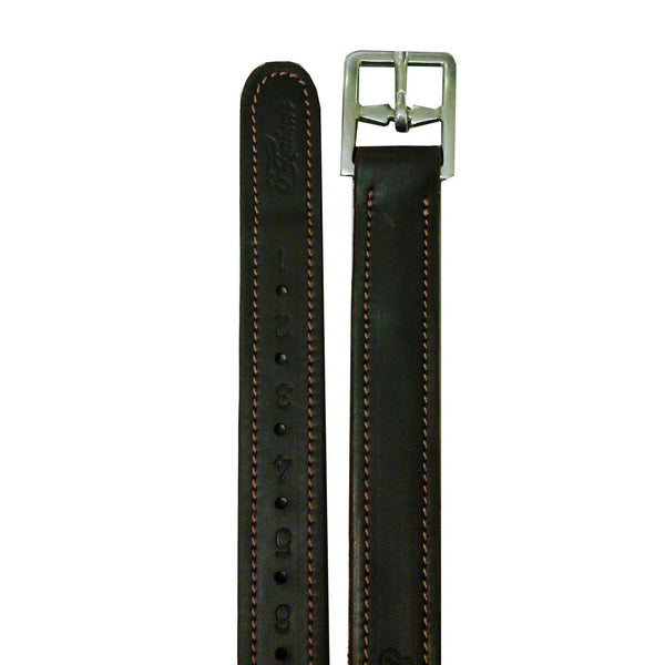 Trainer's Stirrup Leathers