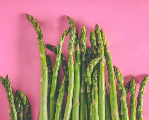 Asparagus on pink background