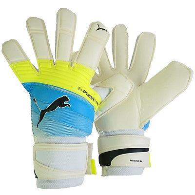 Puma evoPOWER 2.3 Grip RC GK Gloves | Macey's Sports
