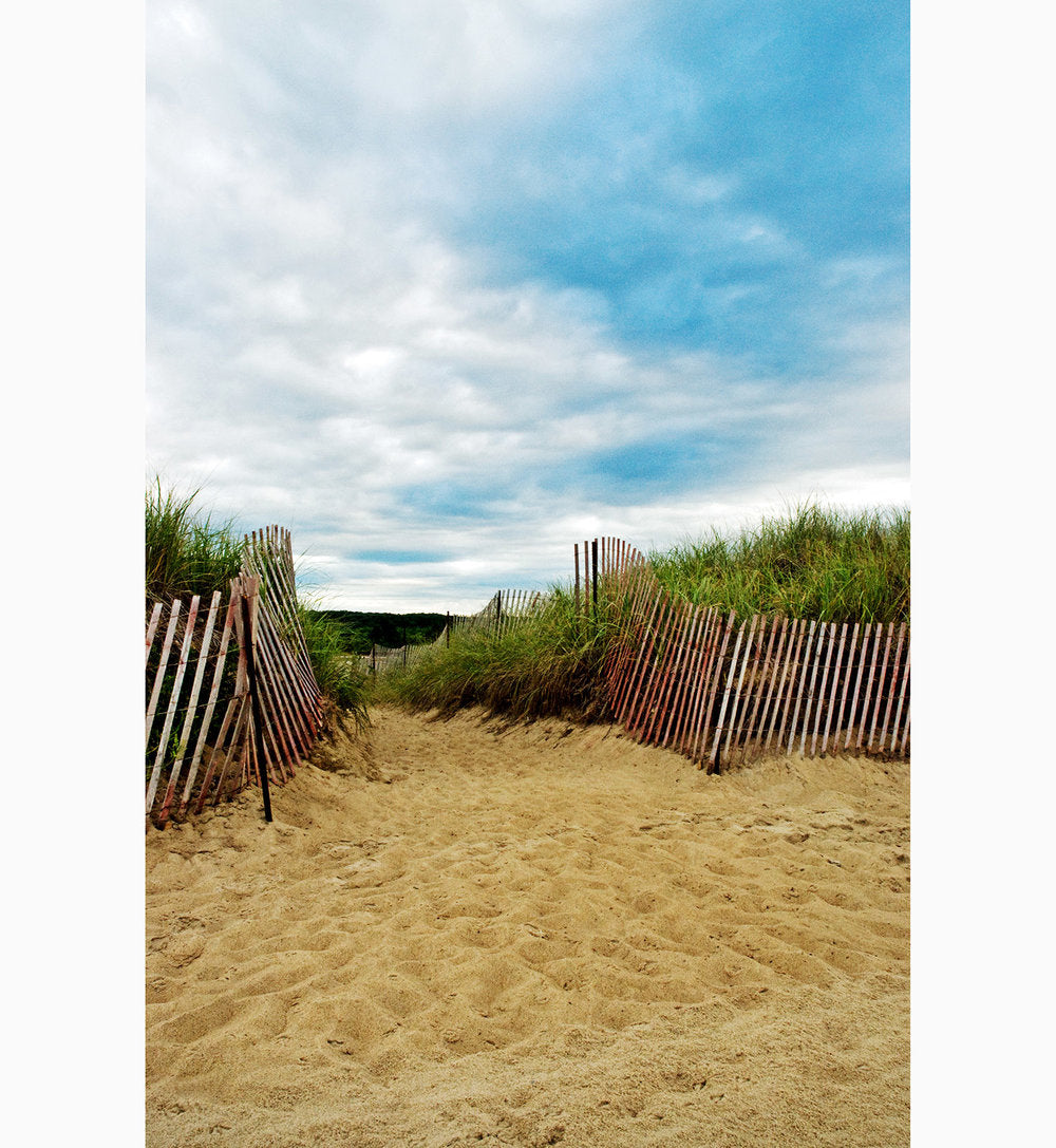 Metal Print - Beach Path