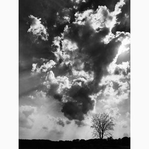 Metal Print - Glorious Sky