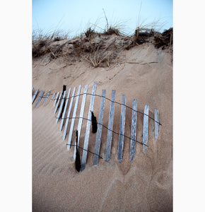 Metal Print - Buried Fence