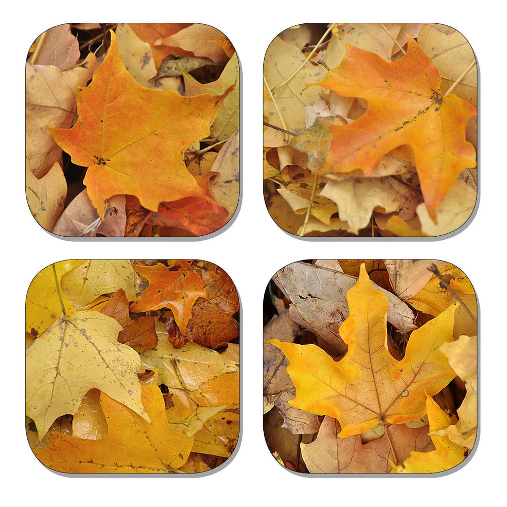 Coaster Set - Autumn Leaves