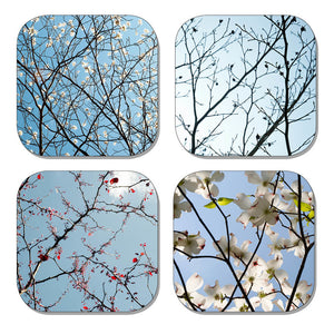 Coaster Set - Branches