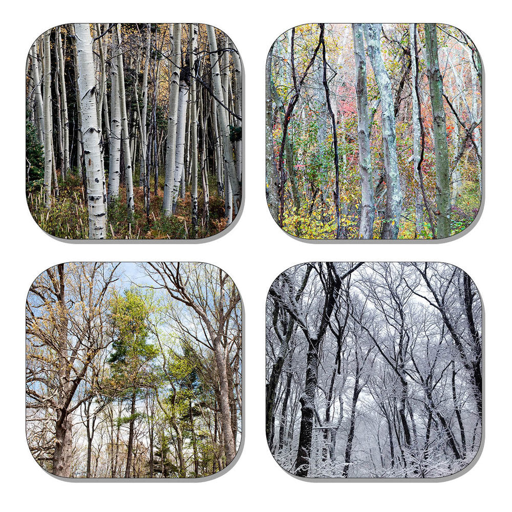 Coaster Set - Trees