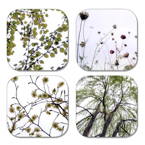 Coaster Set - Nature Green
