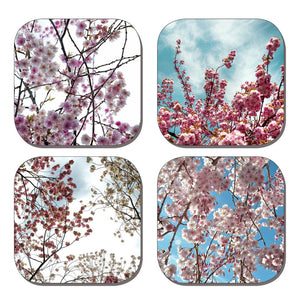 Coaster Set - Cherry Blossoms