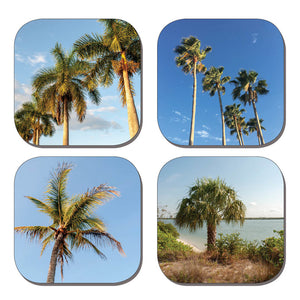Coaster Set - Palm Trees