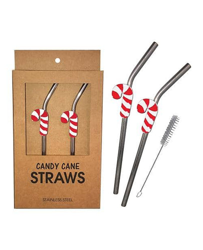 Holiday Candy Cane Reusable Stainless Steel (dishwasher Safe) Straws - Pack Of 2 - Climactic Adventures
