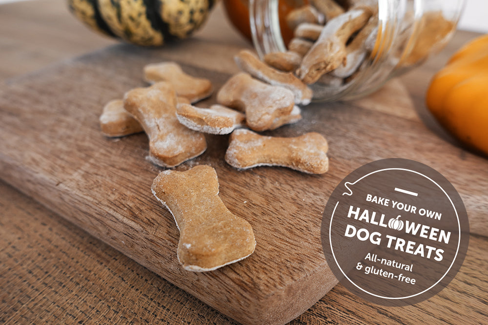 Bake your own all-natural Halloween dog treats