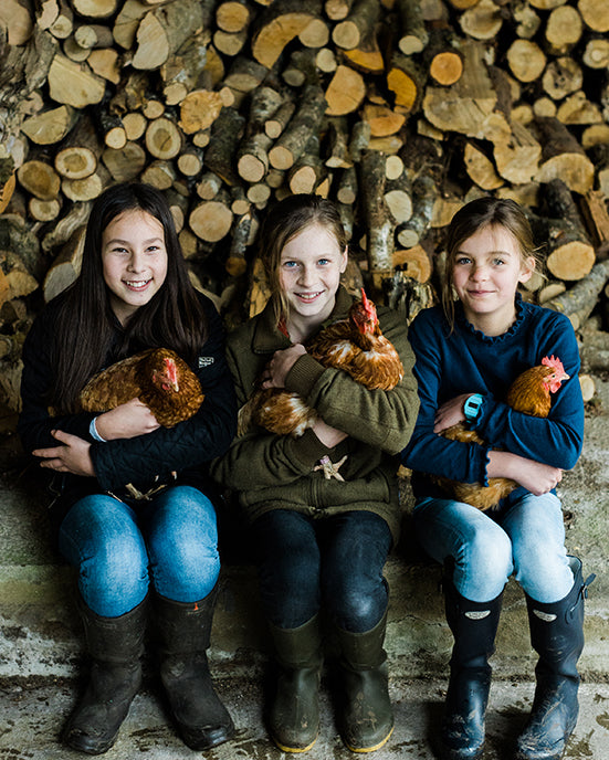 The Gut Doctor: Backyard Poultry