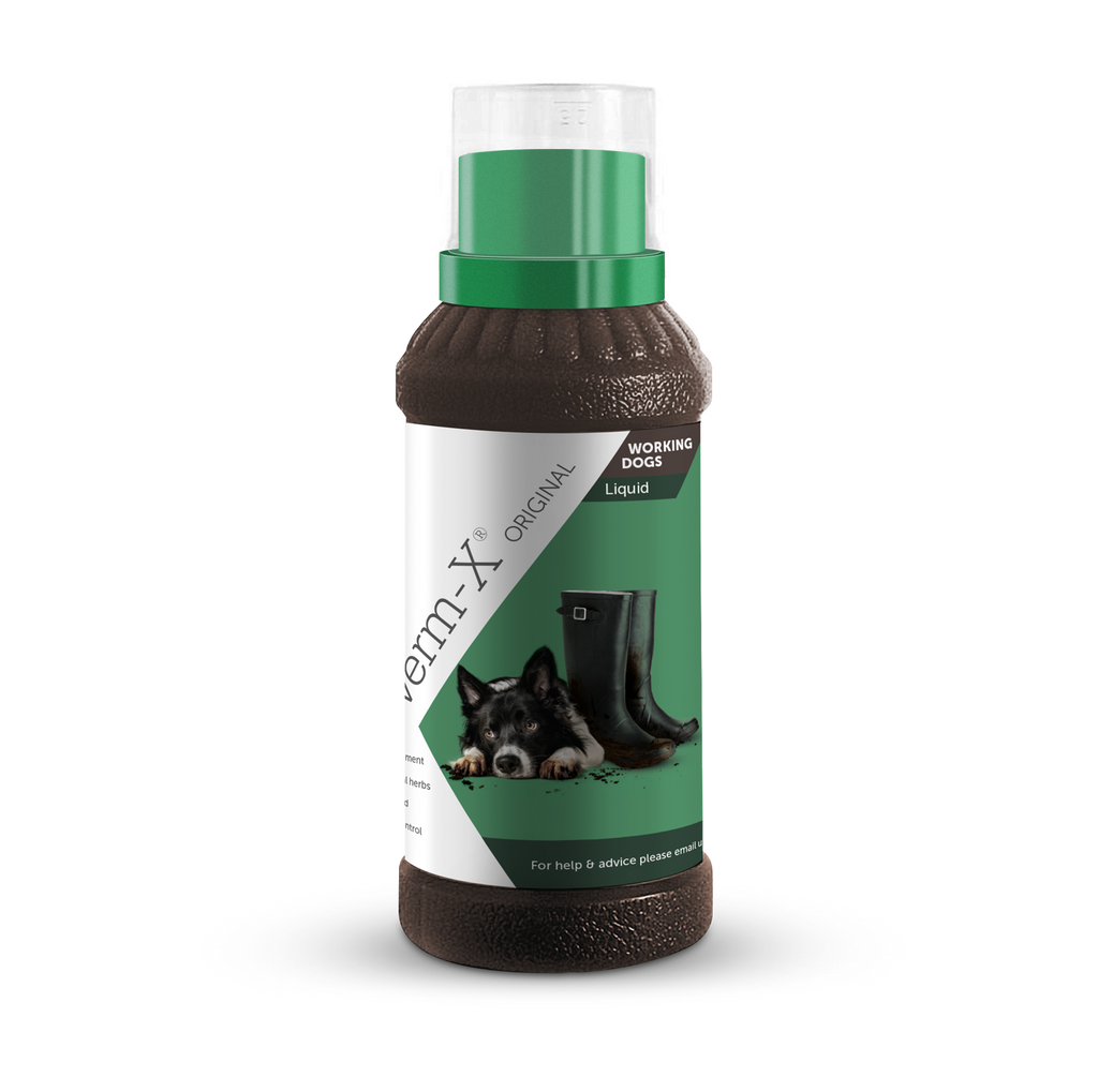 Verm-X Original Liquid for Dogs