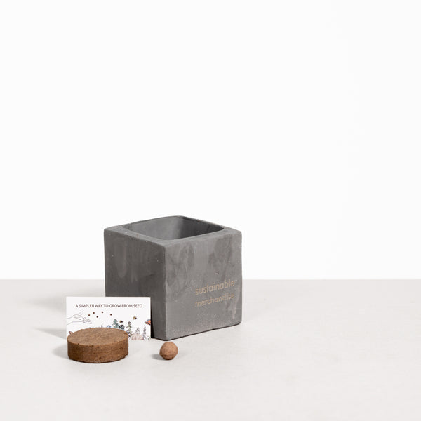 Small Concrete Grow Kit - Urban Mix