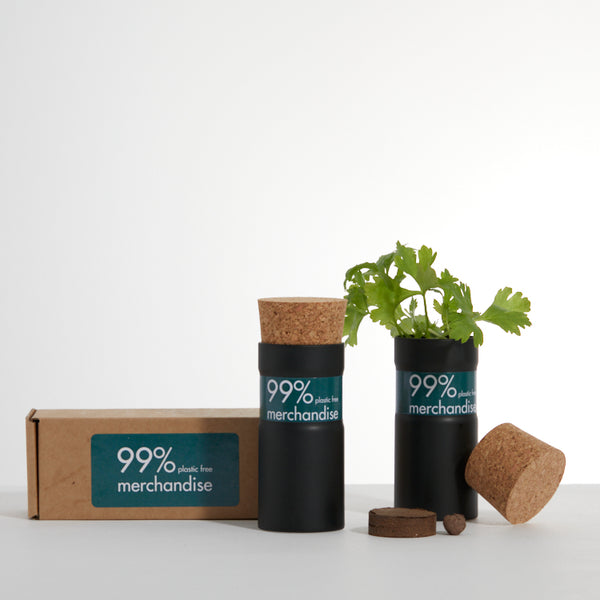 Desktop Garden Boxed - Snow Mix