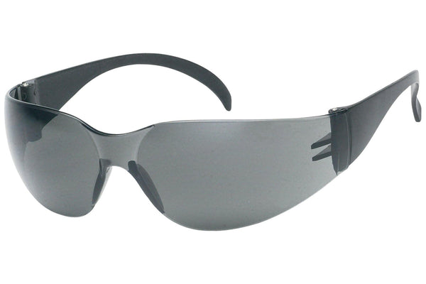 Tinted Safety Glasses Anti-Fog, ANSI Z87