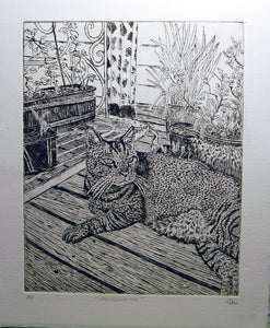 Mongoose the Tabby Cat Etching