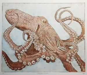 Pacific Giant Octopus - light hand tinted version (one of a kind)