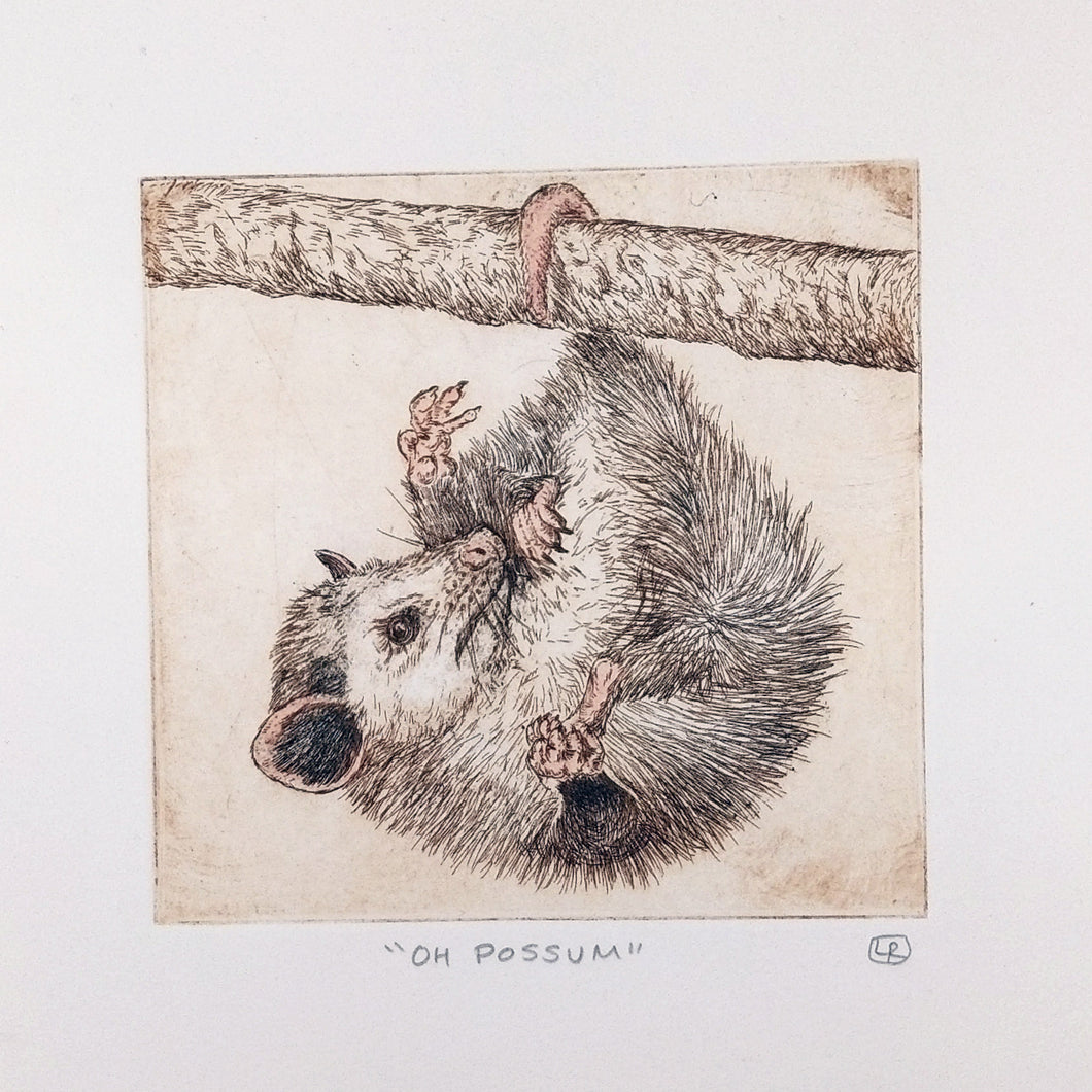 Possum Etching