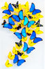 "Two 15"" x 24"" exotic butterfly displays - Heart Design - Regular price $2396.00"