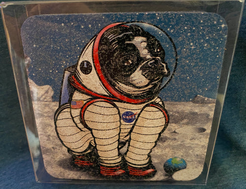 Two Little Fruits Space Dog Cork Coasters