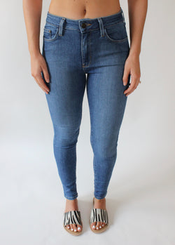 Hildy High Rise Basic Skinny Denim