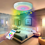 WI-FI Smart Ceiling Lamp