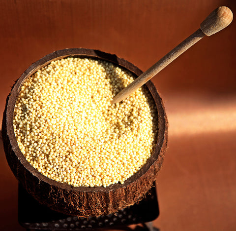 Millet (in Hebrew Dohan)