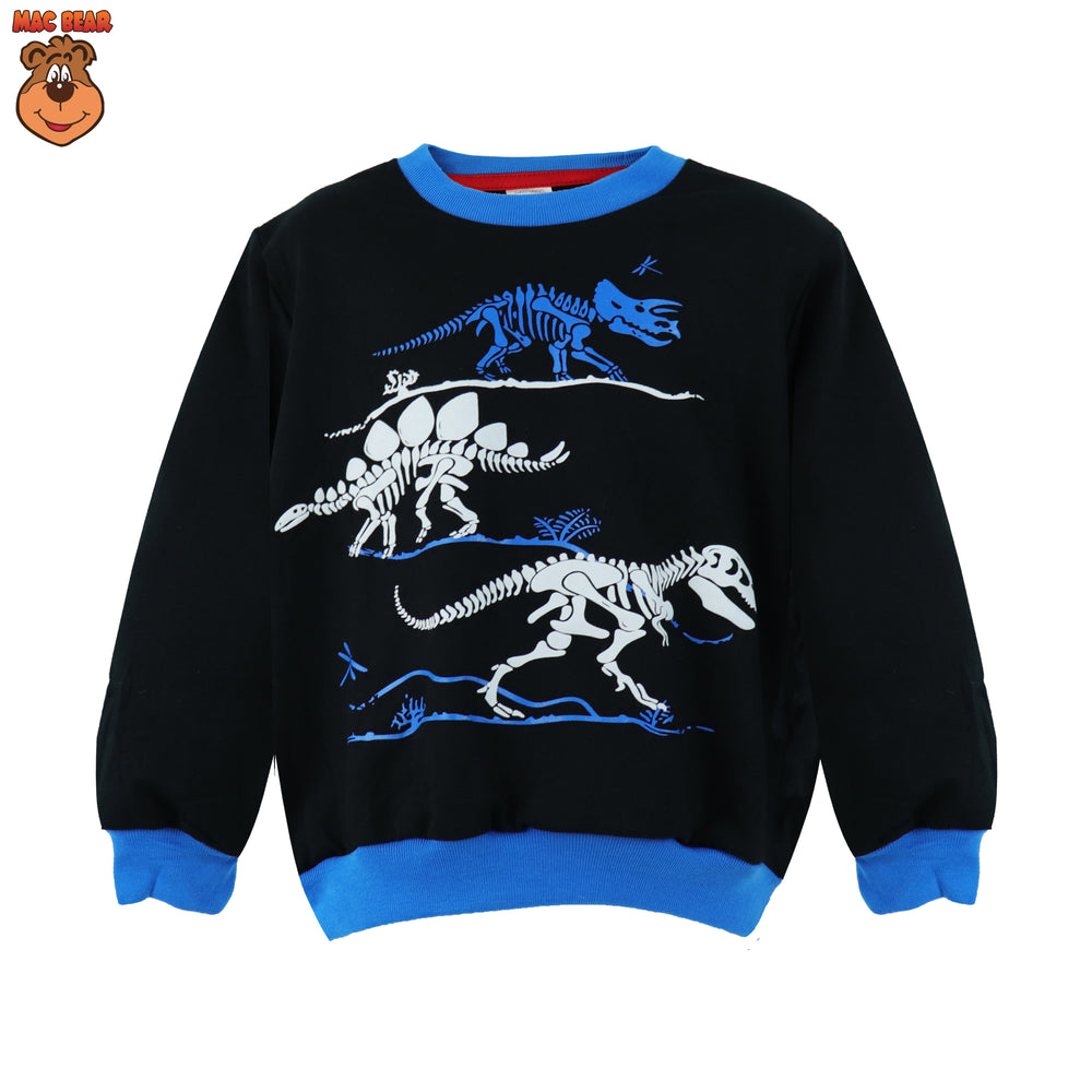 Sweater Fossil Dino