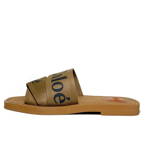 Woody Canvas Logo Slides 37