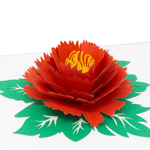 Paper Love-Peony Flower Pop Up Card-3d-lovepop-popup-cards