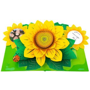 Paper Love-Sunflower Pop Up Card-3d-lovepop-popup-cards
