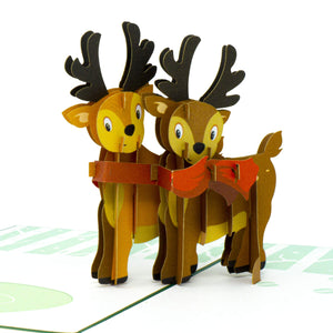 Reindeer Pop Up Christmas Card