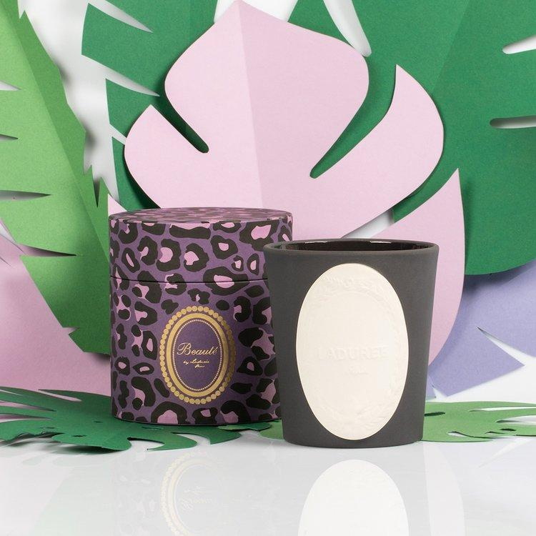 LADUREE Wild Panther Candle | Candles and Fragrances | Deko International