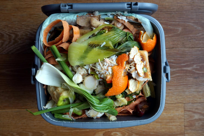 How to Avoid Food Waste: 6 Easy Tips