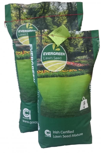 2.5KG EVERGREEN LAWNSEED NO.2 (GENERAL PURPOSE)