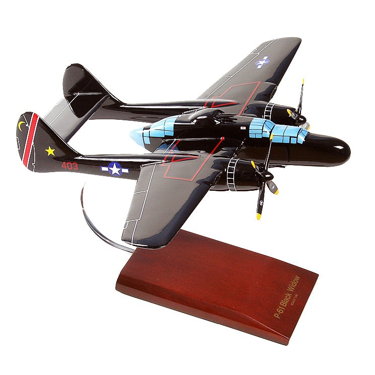 P-61B Black Widow Model Custom Made for you