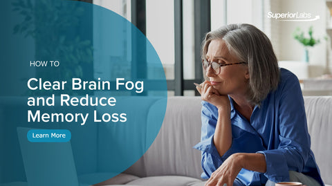 From The Experts: How to Clear Brain Fog and Reduce Memory Loss