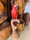 Wood Art Sculpture Parrot