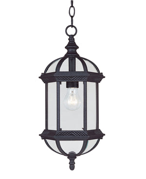 433063 - One Light Hanging Lantern - Textured Black