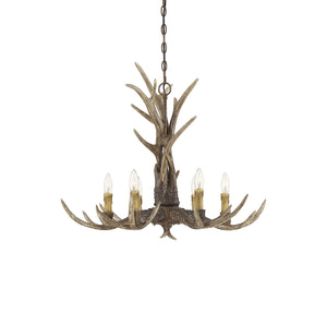 469993 - Six Light Chandelier - New Tortoise Shell
