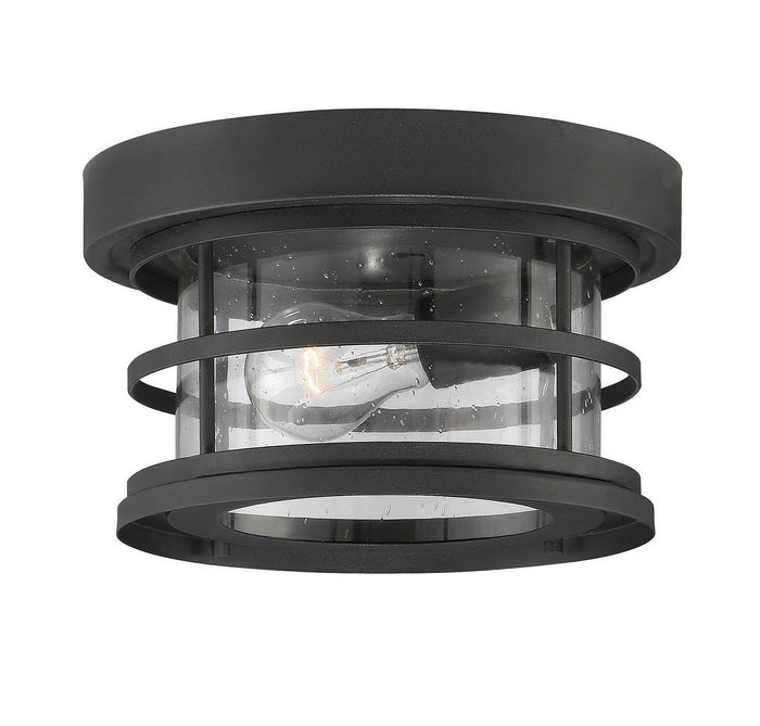 One Light Outdoor Ceiling Mount