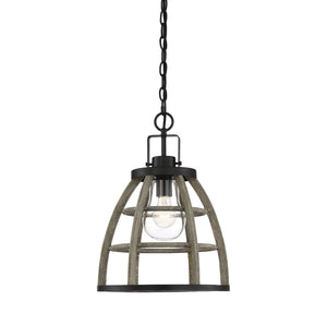 597861 - One Light Outdoor Pendant - Weathered Birch